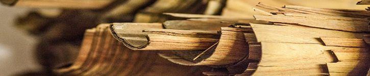 Expertise anatomique de bois