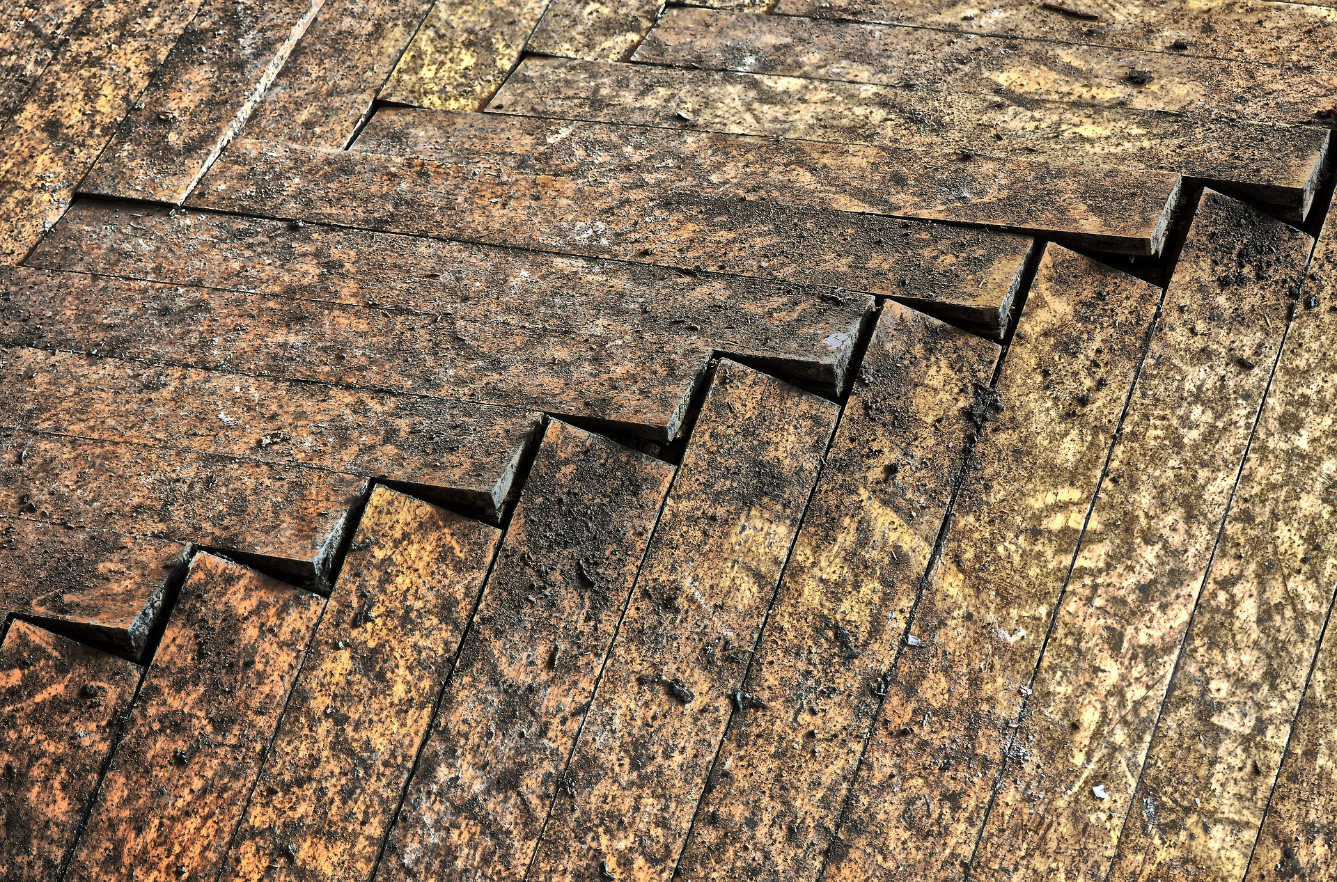 Du Chêne à motifs Bâtons Rompus